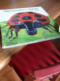 Grouchladybug