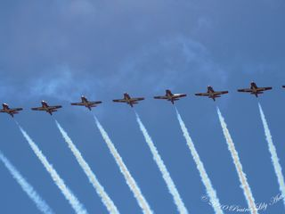 Canadiansnowbirds5